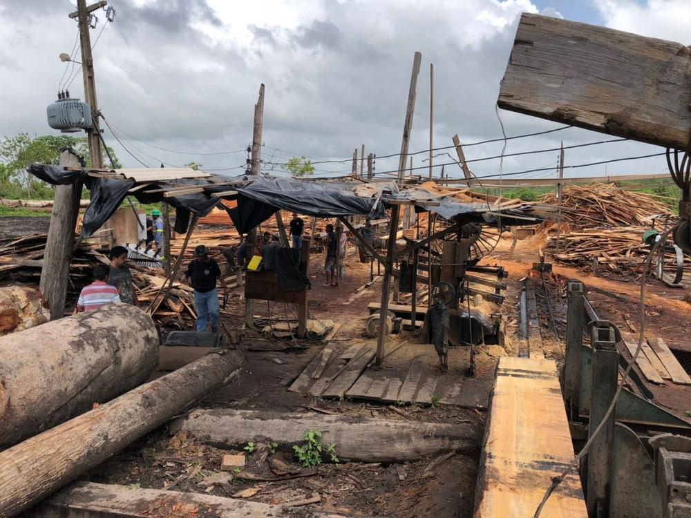 Madeireiras clandestinas são desativadas no Maranhão