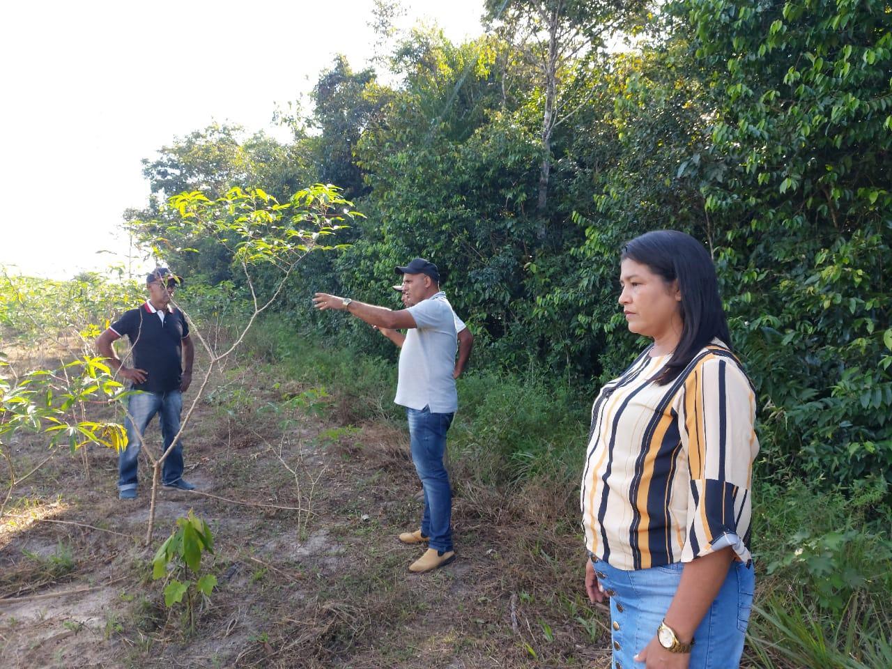 Projeto melhora cadeia produtiva do açaí e começa a mudar a vida dos produtores amapaenses